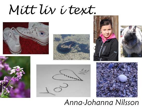 annajohannanilsson